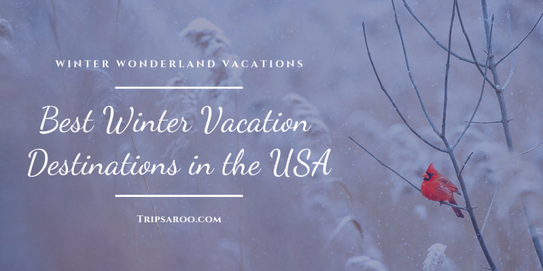 best winter vacation destinations in the USA